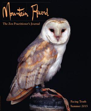 Mountain Record - Summer 2015 - Cover