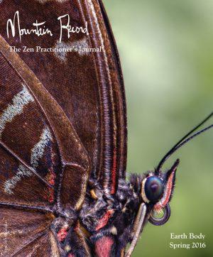 Mountain Record - Spring 2016 - Cover