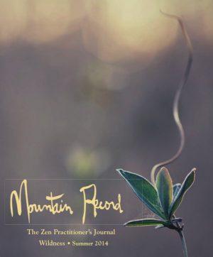 Mountain Record - Summer 2014 - Cover