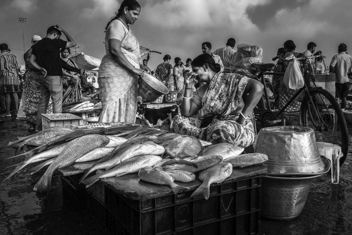 Photo by Ramesh Sa