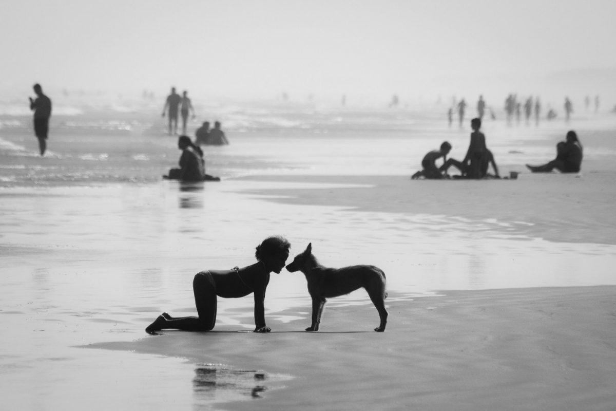 Photo by Edward Zulawski