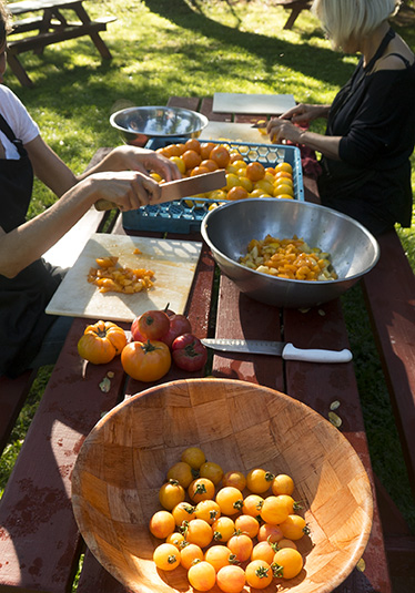 Slicing fresh garden tomatoes at the picnic tables. (Aug. 19)
